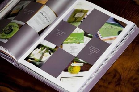 susie-coelhos-book-2